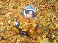 Осенние прогулки с малышом